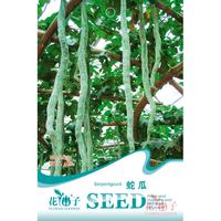 园艺种子   蛇瓜
