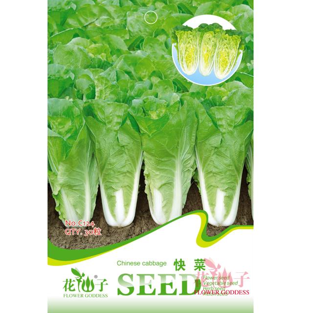 园艺种子  快菜