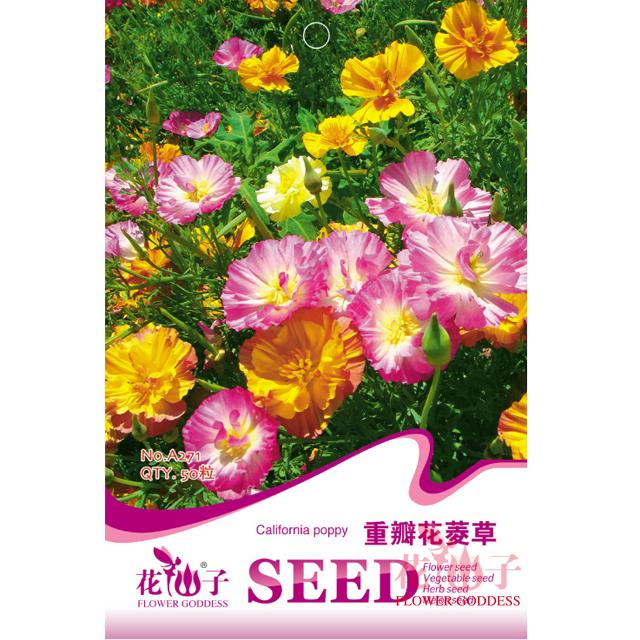 园艺种子  重瓣花菱草